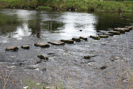 What's new?. stepping stones